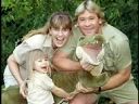 In Memory of Steve Irwin