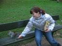 in parc cu veveritele